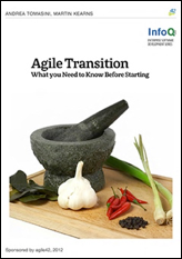Agile Transition